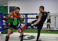 Reasons to opt for MMA training